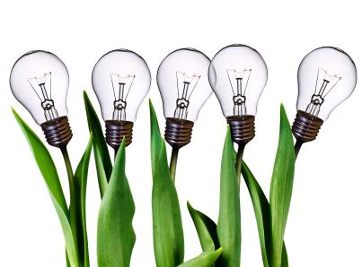 lamp bulb tulips