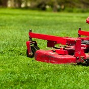 5 Ways to Save Money on Your Lawn Care